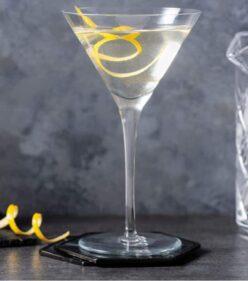 Cirka Vodka - Martini Terroir